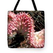 Strange Succulent Tote Bag