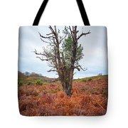 Strange Tree Tote Bag