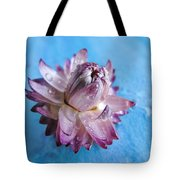 Straw Flower On Blue Tote Bag