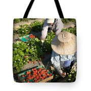 Strawberry Harvest Tote Bag