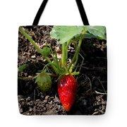 Strawberry Plant Tote Bag