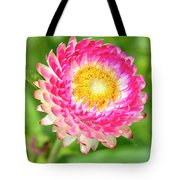 Strawflower Tote Bag