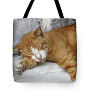 Stray Cat Sleeps On The Floor-1 Tote Bag
