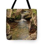 Stream In Judy Woods Tote Bag
