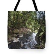 Stream In  Rainforest Tote Bag