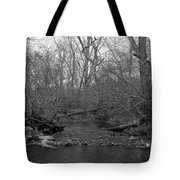 Stream In The Woods Tote Bag