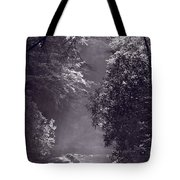 Stream Light B W Tote Bag