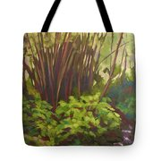 Stream Near Akaka Falls Tote Bag