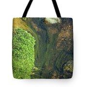 Stream Of Weeds I Tote Bag