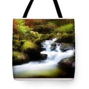 Stream Steps Tote Bag