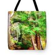 Streams In A Wood Covered With Leaves Tote Bag