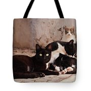Street Cats - Portugal Tote Bag