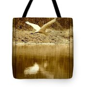 Strength And Peace Tote Bag