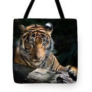 Strength Through Darkness Tote Bag