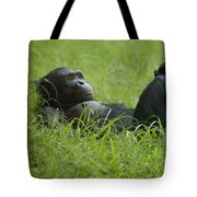 Stress Relief Tote Bag