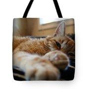 Stretching Cat Tote Bag