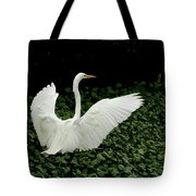 Stretching My Wings Tote Bag