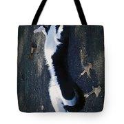 Stretchy Cat Tote Bag