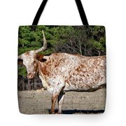 Strike A Pose - Longhorn Style Tote Bag