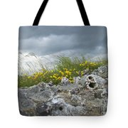 Striking Ruins Tote Bag