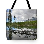 String Lake In Grand Tetons Tote Bag
