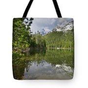 String Lake Teton Reflection Tote Bag