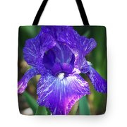 Striped Blue Iris Tote Bag
