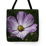 Striped Cosmos 1 Tote Bag