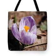 Striped Crocus Tote Bag