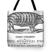 Striped Pig Curiosity Tote Bag