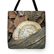 Striped Shelf Fungus - Basidiomycota Tote Bag