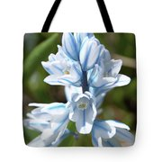 Striped Squill Emerging Tote Bag