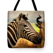 Stripes And Horns 2 Tote Bag