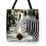 Stripes And Symmetry  Tote Bag