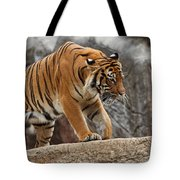 Stripes Tote Bag by Jonas Wingfield