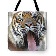 Stripes, No. 16 Tote Bag