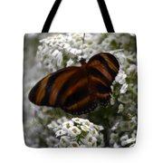 Stripes On Petals Tote Bag