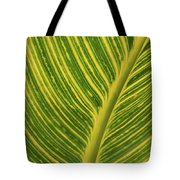 Stripey Leaf Tote Bag