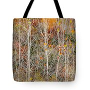 Stripped Bare To The Bark Tote Bag