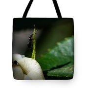 Strive Hard  Tote Bag