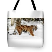 Stroll In The Snow Tote Bag