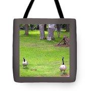 Strolling Canadian Geese Tote Bag