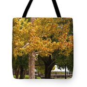 Strolling In Waterfront Park Tote Bag