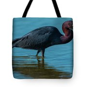 Strolling On A Bright Morning Tote Bag
