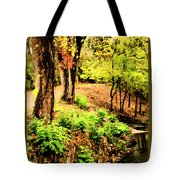 Strolling Through The Park Tote Bag by Savannah Fonner