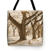Strong And Proud In The South - Old World Tote Bag
