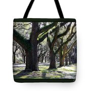 Strong And Proud In The South With Border Tote Bag