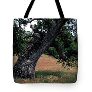 Strong Old Oak Tote Bag