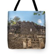 Structure Two In Calakmul Tote Bag
