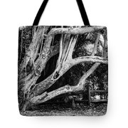 Struggles Tote Bag